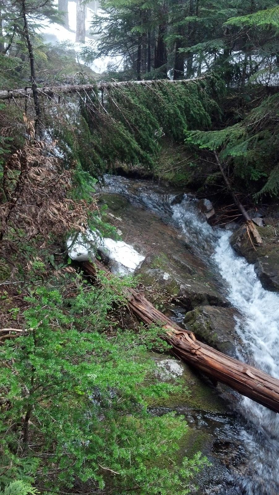 2012-06 summit lake-1
