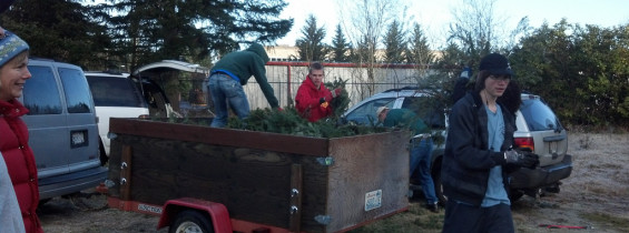 Christmas Tree Pickup, January 4