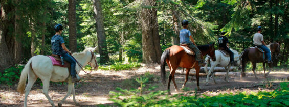 Camp Fife Horsemanship Merit Badge, July 16-22